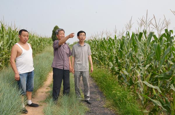 黎岭村地名的传说(上)